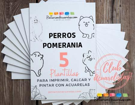 Son 5 plantillas diferentes listas para imprimir y colorear de perros pomerania
